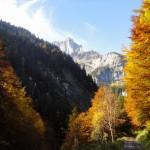 Couleurs d'automne sous la pointe de Sales