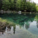 Toujours le lac vert