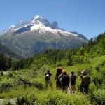 Aiguille Verte depuis le col des Montets